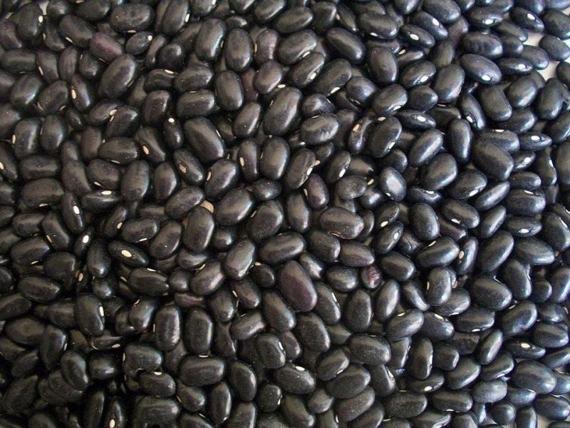 Best Black Bean Recipes
