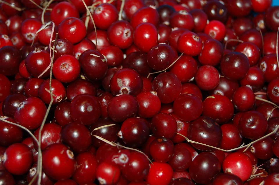 Best Simple Cranberry Sauce Recipes